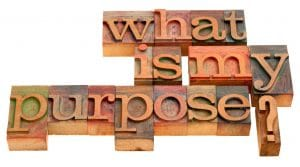 Definiteness of Purpose 8 Figure Company